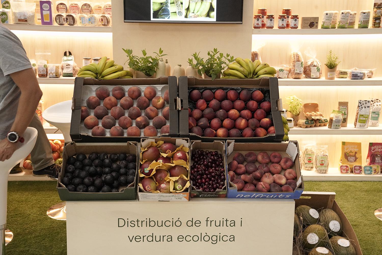 distribucion fruta y verdura