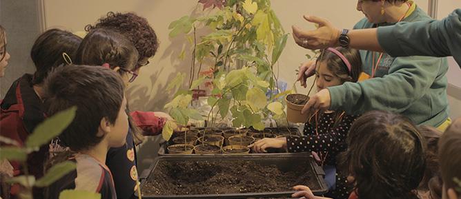 Festival MamaTerra en Sevilla: sembrando la semilla eco
