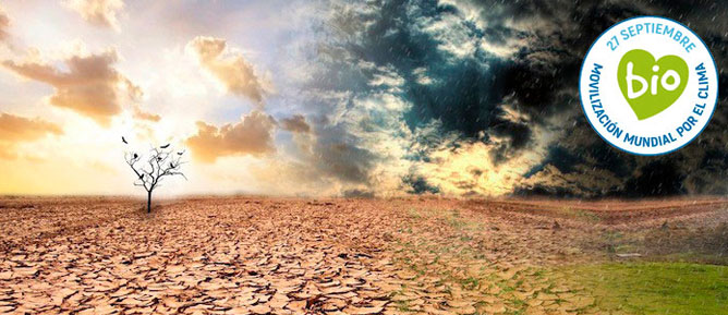 MÁS DE 300 ORGANIZACIONES SE SUMAN A LA HUELGA MUNDIAL POR EL CLIMA